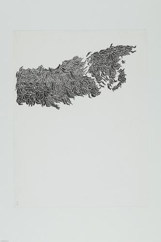 13.-Novemberfaglar,-blyerts,-50x70-cm
