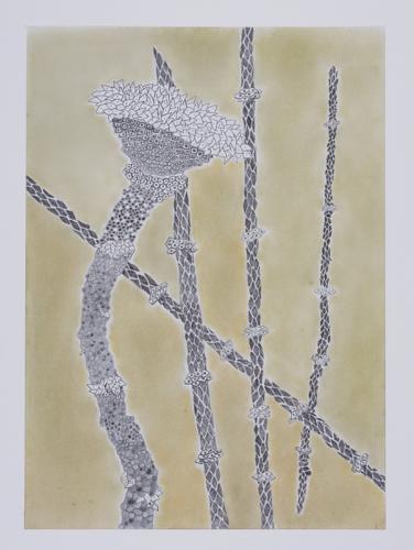 16.-Ar-till-5,-blyerts,-gron-grafit,-60x80-cm