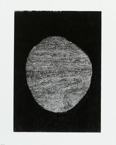 7.--Svartmane,-blyerts,-kol,-40x50-cm